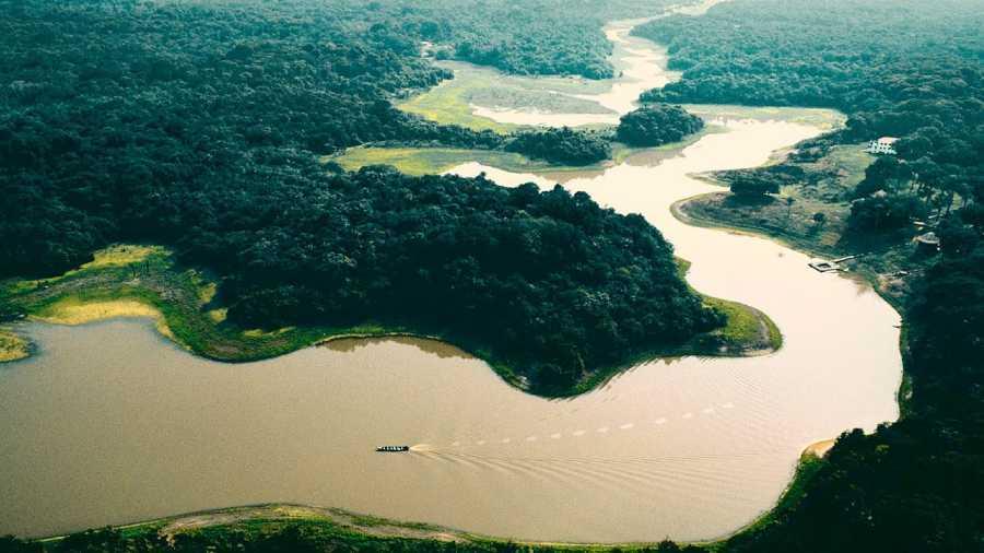 Por qué la Amazonía es tan importante en el Perú